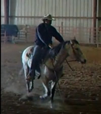 metal_horse