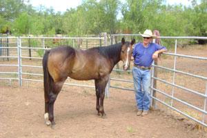 LarryH-and-horse-7-22-14-edit