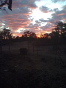 sunset 2009